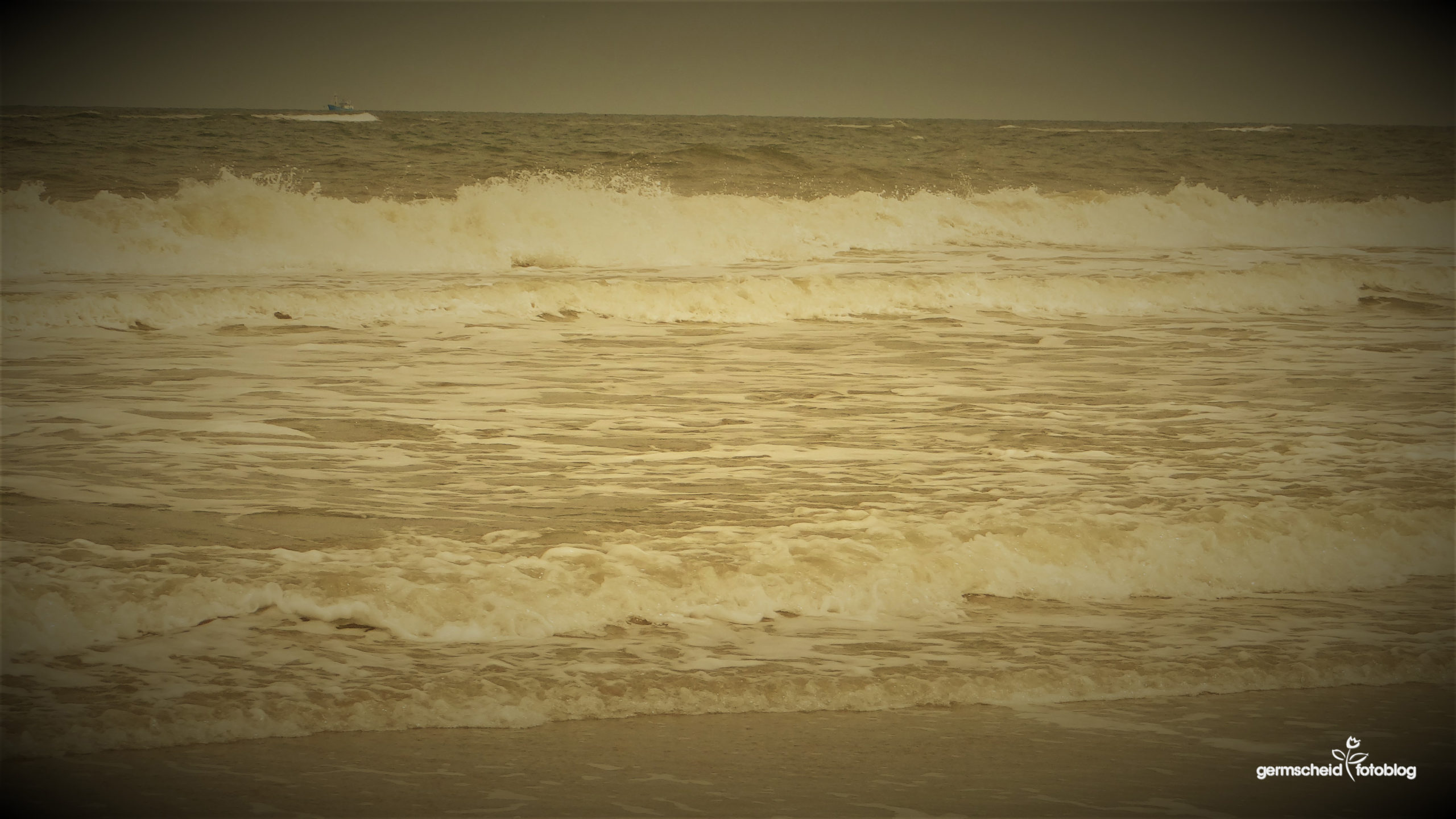Nordsee scaled